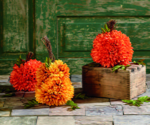 Flower Pumpkins