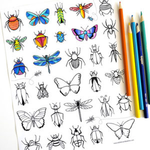 Bugs and Butterflies Coloring Page