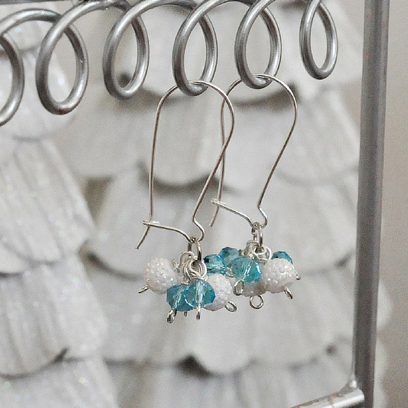 Snow and Ice Earrings