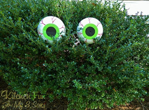Boogeyman Bush Eyes