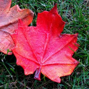 Fall in Love Leaf Trays