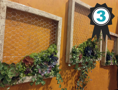 succulent-garden-wall