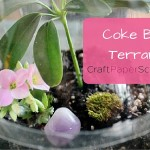 Coke Bottle Terrarium