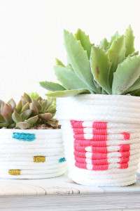 DIY Rope Wrapped Plants