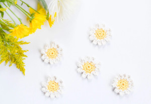 Sweet Daisies Crochet Pattern