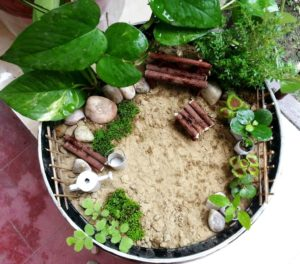 Cute and Easy Miniature Garden