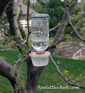 Homemade Hummingbird Feeder