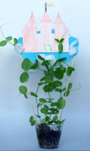 Jack and the Beanstalk Educational Activity