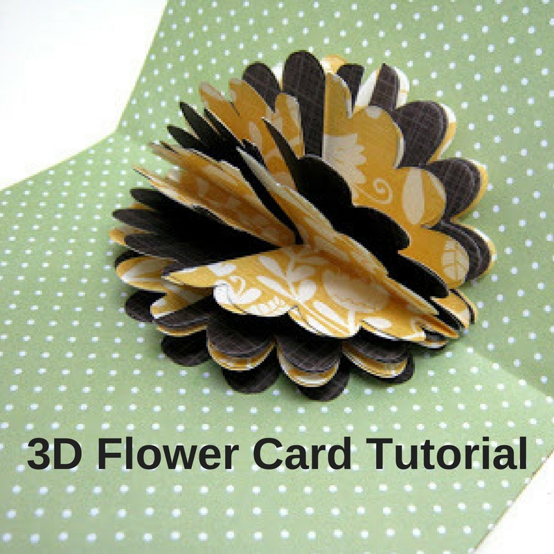 3d flower card tutorial craft paper scissors first start by working on the outside of the card attach a contrasting color square to the front then cut two different sizes of flowers and add them with mightylinksfo
