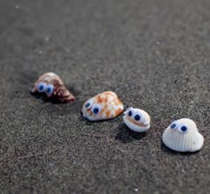 Seashell Beach Buddies